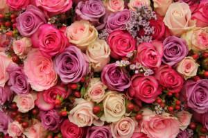 Цветы Светлане